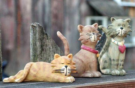 CatsL