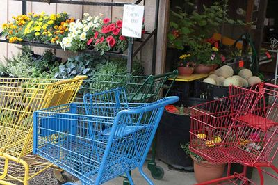 Brightlycoloredshoppingcarts.5-25-15